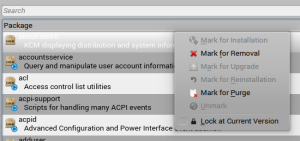 Muon context menu when a single installed package is selected
